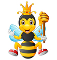 Cartoon bee holding honey vector image