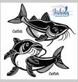 catfish - set fishing on usa isolated vector image vector image