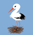 cute stork on a nest vector image vector image