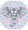 Ethnic patterned head of indian elephant vector image vector image