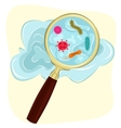 germs and bacteria under magnifying glass vector image