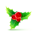 holly leaves and berries vector image vector image