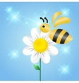 Merry bee on a flower vector image vector image