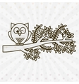 owl bird design vector image