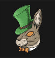 rabbit head st patricks day vector image