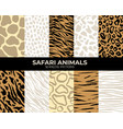 seamless patterns animal fur print tiger vector image vector image