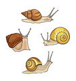 set snails vector image