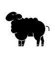 sheep icon sign on isolate vector image