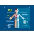 Human Body Anatomy Infographic Flat Design on Blue vector image