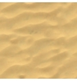 Beach sand background Mesh vector image