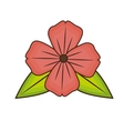 beautiful flower natural vector image