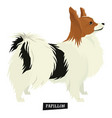 dog collection papillon geometric isolated object vector image vector image