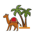 egyptian camel with saddle and tall tropical palms