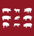 quality silhouettes pigs red vector image vector image