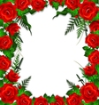 red roses with leaves background vector image