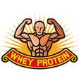 Whey protein label vector image