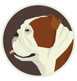 english bulldog geometric style avatar icon round vector image vector image