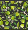 fruit lime floral seamless pattern citrus vector image vector image