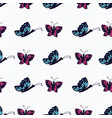 hand drawn blue and pink butterfly on a white vector image vector image