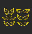 wings golden icon set design graphic element vector image