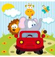 animals by car