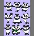 character design panda set vector image