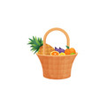 colorful fruit in wicker basket with handle vector image vector image