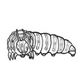coloring book caterpillar vector image vector image