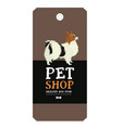 poster pet shop design label papillon geometric vector image vector image