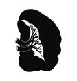 Spleen black icon vector image vector image