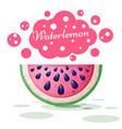 watermelon cute on the white vector image