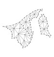 brunei darussalam map of polygonal mosaic lines vector image