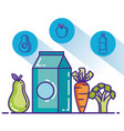 healthy food lifestyle icons vector image vector image
