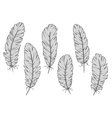Isolated gray quill feathers set vector image vector image