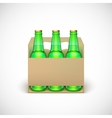 Packaging of beer vector image vector image