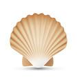scallop seashell realistic sea shell close vector image