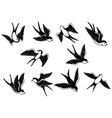 set hand drawn swallow on white background vector image