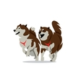 Two Husky Dog Cartoon vector image vector image