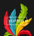 creative background with colorful feathers vector image