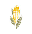 corn cob simple icon design vector image vector image