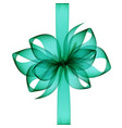 green transparent bow and ribbon close up vector image vector image