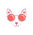 cat im sunglasses vector image