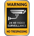 Cctv video surveillance label vector image vector image