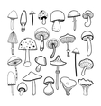 Doodle black and white mushrooms on background vector image