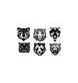 tiger animal vector image