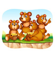 Grizzly bear eating honey vector image