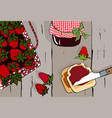 hand drawn vintage strawberry set vector image vector image
