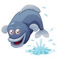 Fish jump vector image