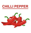 chilli pepper isolated on white background vector image vector image