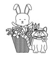 cute raccoon and rabbit in basket bohemian style vector image vector image